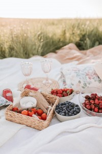 2403 staycation picnic