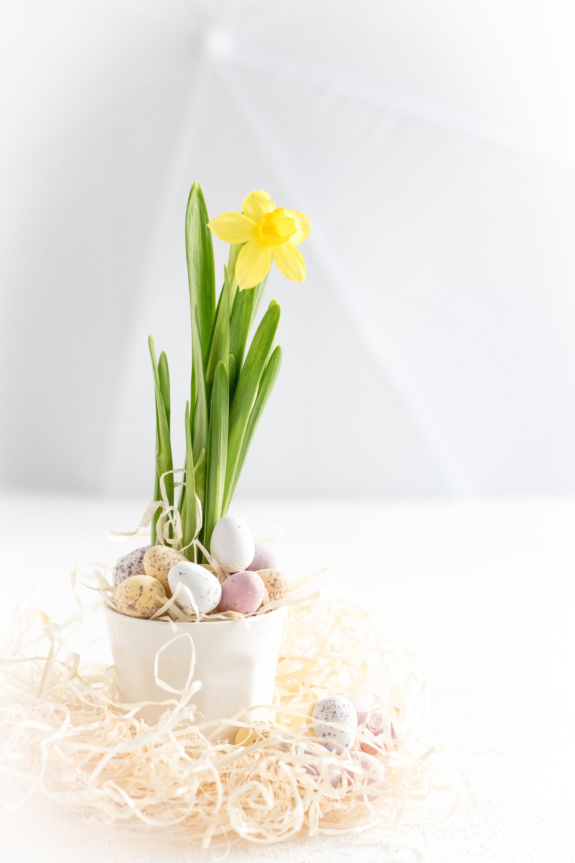 2903 Spring Easter