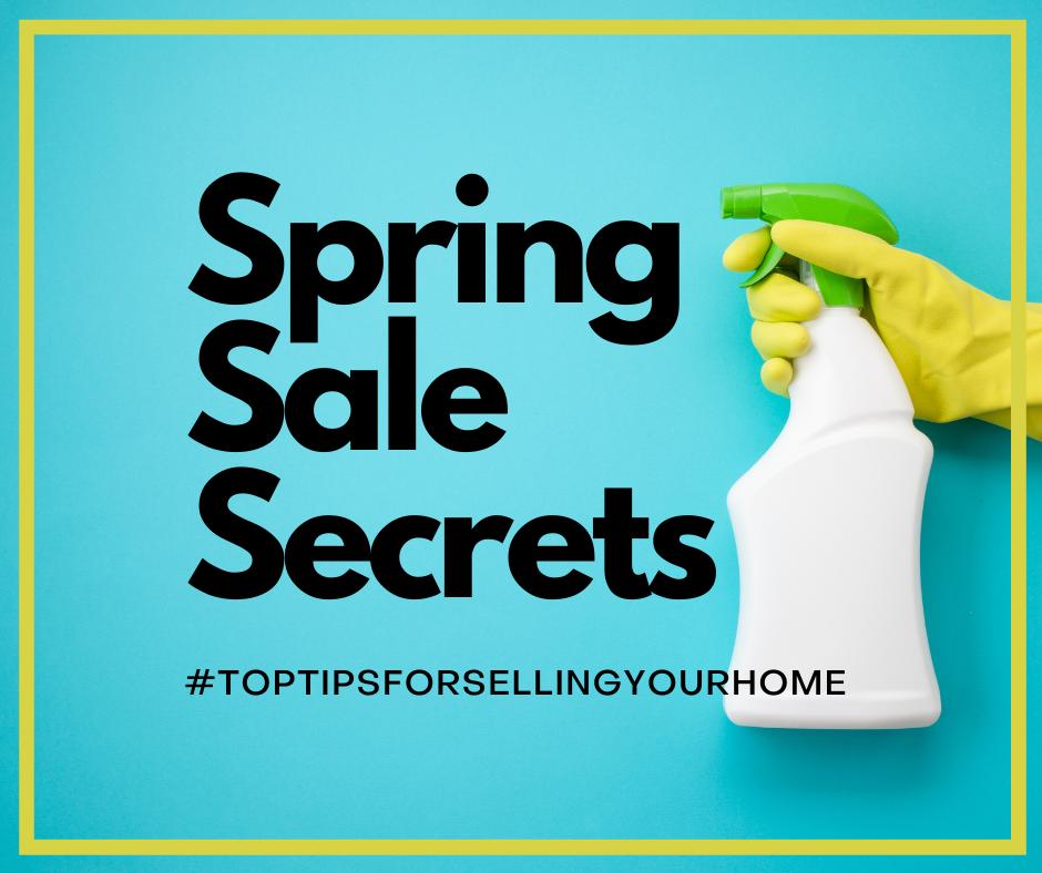 Spring Sale Secrets 1